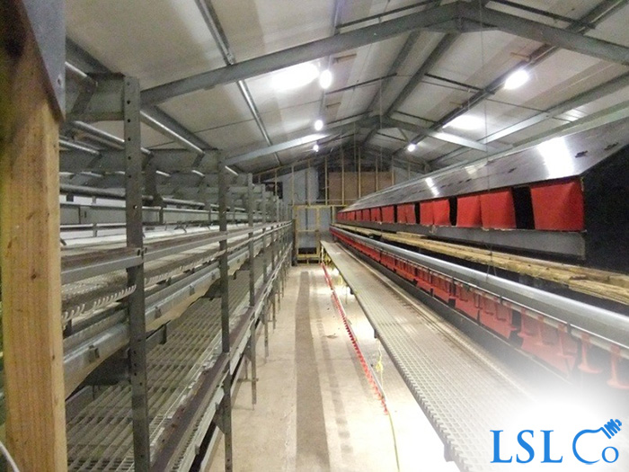 LED Linear Lighting & Lighting Control, Multi-tier Chicken House – Somerset 2014