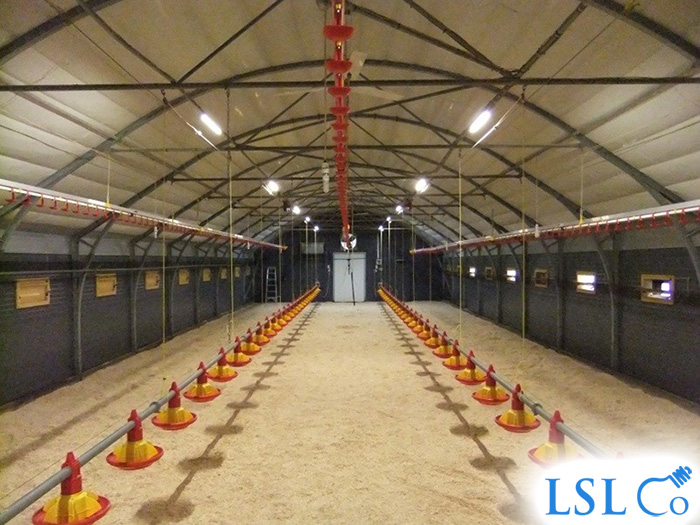 LED Linear Lighting & Lighting Control, Broiler Chicken House – Wiltshire 2013
